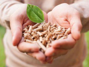 Kansainvälistä kiinnostusta suomalaiseen biojalostusteollisuuteen
